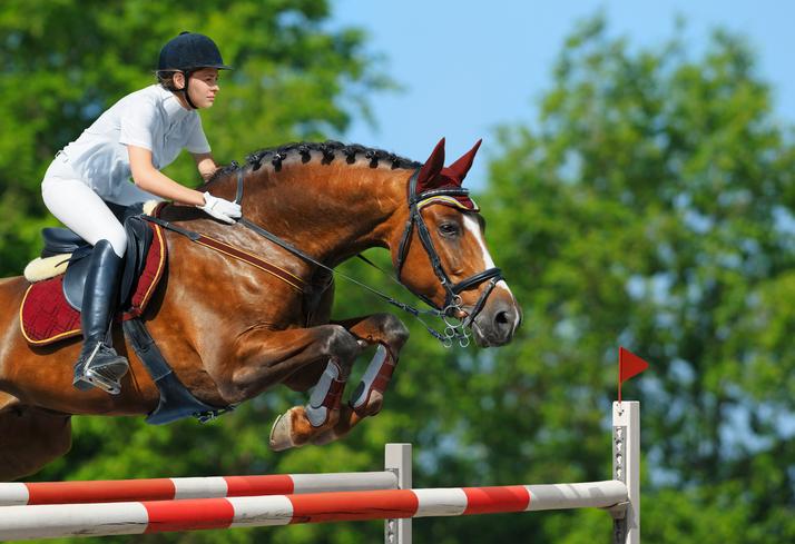 Los concursos de salto a caballo más importantes